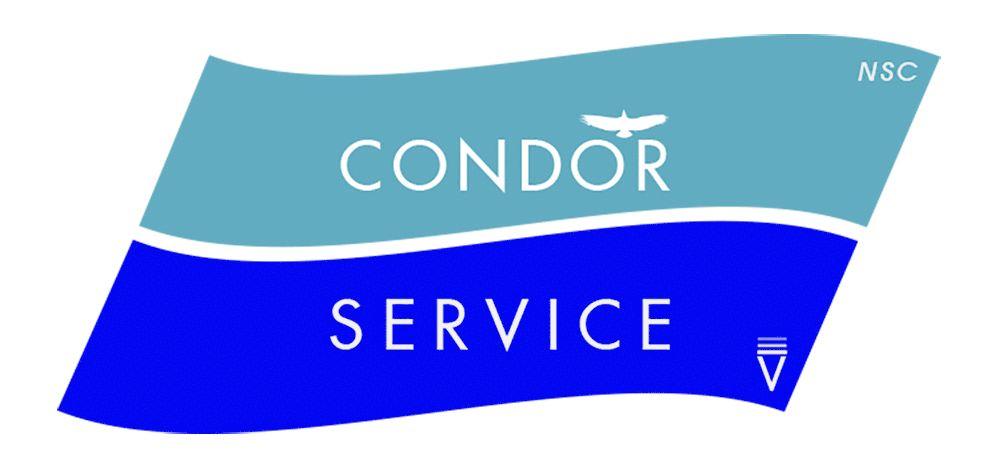 marchio figurativo condor service